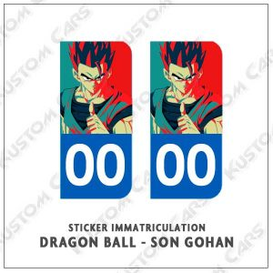 sticker songohan plaque immatriculation